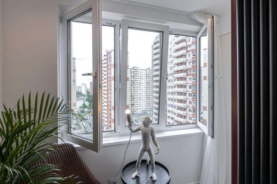 Пластиковые окна как у героев программы - 210806331